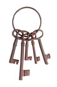 Kulcskarika DB53