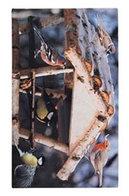 Madárházas lábtörlő - Cipős szőnyeg, 75 x 45 cm RB97
